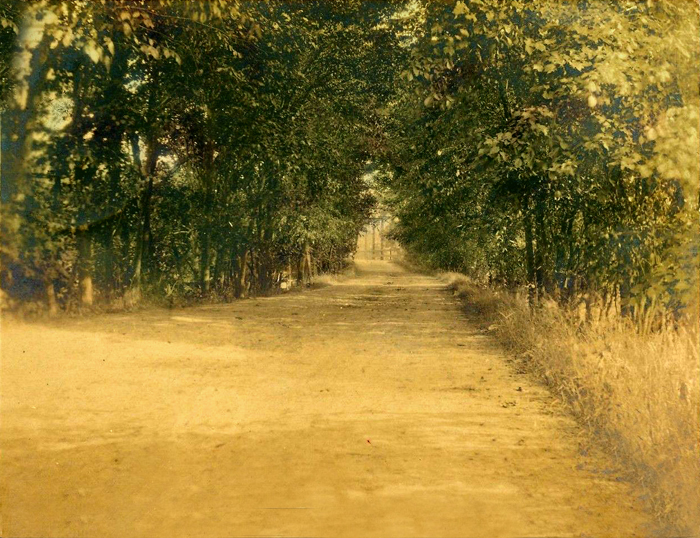 1907-Country-Road-at-Lowell-Michigan