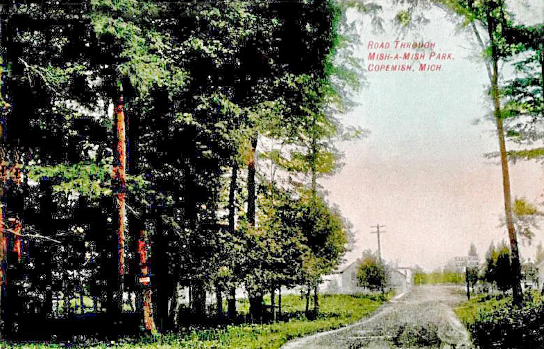 1907 Road Through Mish-a-Mish Park Street Scene View Copemish, MI