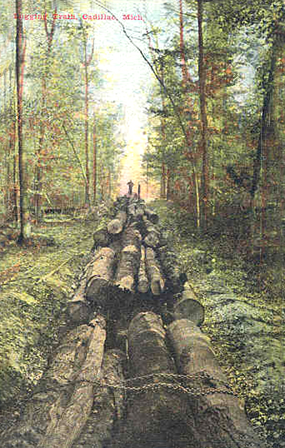 Early Logging Train Cadillac Michigan
