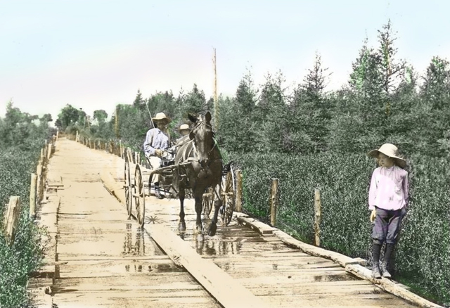 Michigan Plank Road late 1800s