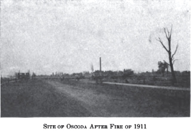 Image of the Site of Oscoda Michigan after fire of 1911